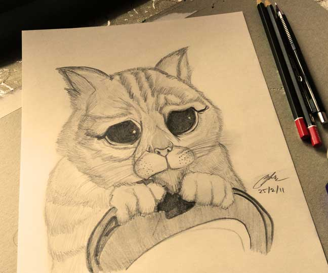 Shrek Puss in Boots Pencil Sketch by Shah Ibrahim